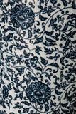 Kinesiskt porslin Royaltyfria Bilder
