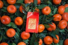 Kinesiskt rött paket för nytt år på tangerinestree Royaltyfri Foto