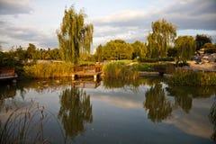 kinesträdgård arkivfoton