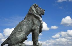 The king. Statue of a sitting lion on a blue sky background Royalty Free Stock Image