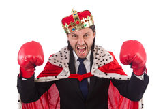 King businessman in funny concept isolated Royalty Free Stock Photos