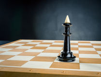 King on the chess board Royalty Free Stock Photography