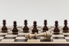 King in chess has fallen to several pawns Stock Images