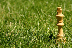 King chess piece on grass. King chess piece on green grass outside Stock Photo