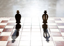 King chess piece with others in background Royalty Free Stock Photos