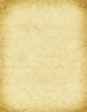 King Cobra Background Texture. A sample of an exotic reptile texture royalty free stock photo