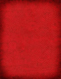 King Cobra Background Texture. A sample of an exotic reptile texture royalty free stock images