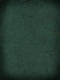 King Cobra Background Texture. A sample of an exotic reptile texture stock photos