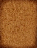 King Cobra Background Texture. A sample of an exotic reptile texture royalty free illustration