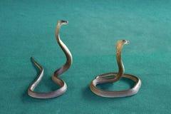 King cobras. Snake show - King cobra, Phuket, Thailand Stock Photos