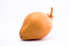 King Coconut fruit on white background Royalty Free Stock Images