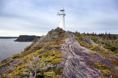 King Cove Head Lighthouse royalty free stock image