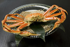 King Crab. On the plate royalty free stock photos