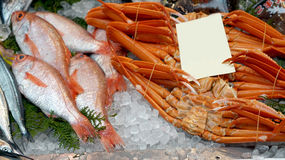 King crab fish on ice with blank sign for copy space. King crab and fish on ice in market with blank sign for copy space Stock Photos