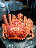 King crab Stock Photography