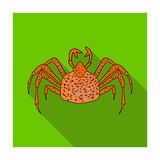 King crab icon in flat style isolated on white background. Sea animals symbol stock vector illustration. King crab icon in flat design isolated on white Stock Photo