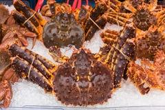 King crab. Japanese Taraba sea king crabs sale at Hakodate market Royalty Free Stock Image