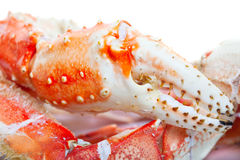 King crab legs Stock Images