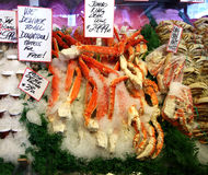 King Crab Legs on Ice Royalty Free Stock Image