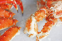 A king crab Stock Photos