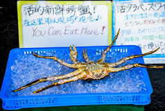 King crab for sell on the ice Royalty Free Stock Image