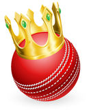 King of cricket Royalty Free Stock Photography