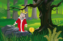 King in forest Stock Images