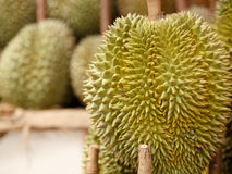 King of fruit durian from thailand. Durian fruit on the market in thailand Stock Photo