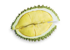 King of fruits, durian Royalty Free Stock Photo