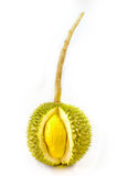 King of fruits, durian long stalk, on white background Stock Photos
