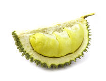 King of fruits, durian long stalk, on white background Stock Image