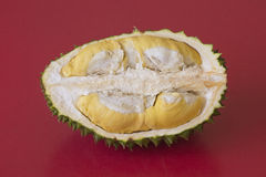 King of fruits, durian on red background Stock Photos