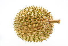 King of fruits, durian Stock Photography