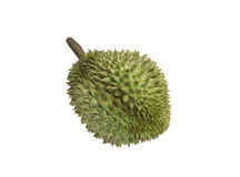 King of fruits durian Stock Images