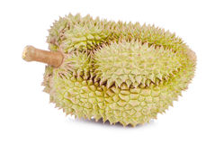 King of fruits, durian on white background Stock Image
