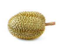 King of fruits, durian on white background Stock Images
