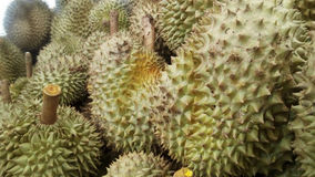 king of fruits, group of Durian Stock Photos
