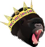 King gorilla colour vector illustration
