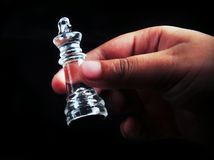 The King in hand Stock Photography