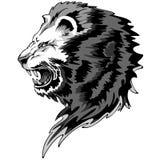 King Lion Roar. Majestic Roaring King Lion's Head Portrait, Tattoo Style Design Stock Photos