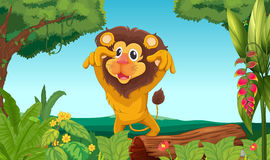 King lion in the woods Stock Photo