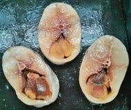King mackerel slice Stock Images