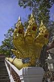 The king of Nagas at Khaokalok temple Royalty Free Stock Photo