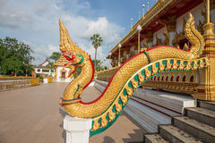 King of nagas or Thai gloden dragon Royalty Free Stock Photo