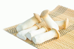 King oyster mushrooms. Royalty Free Stock Images