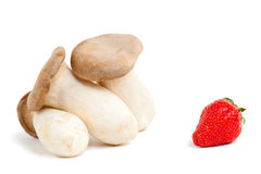King oyster mushrooms with strawberry. Isolated on white background with shadow Stock Photography