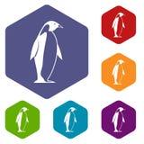 King penguin icons set hexagon Stock Photos