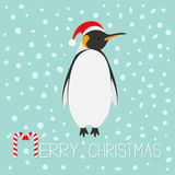 King Penguin Santa red hat. Emperor Aptenodytes Patagonicus Cute cartoon character Royalty Free Stock Photography
