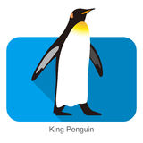 King Penguin standing watch up, Penguin seed series. Vector illustration Royalty Free Stock Photo