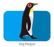 King Penguin walking, Penguin seed series. Vector illustration Royalty Free Stock Image